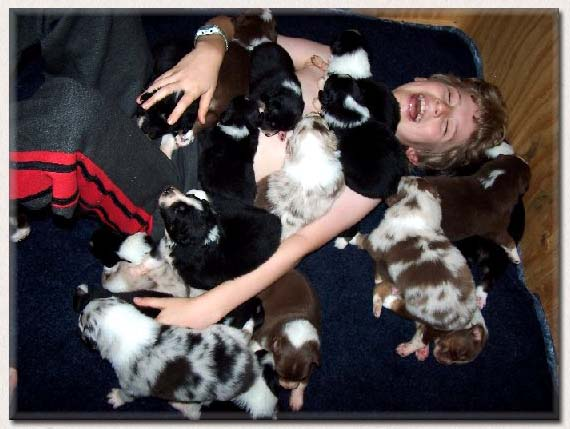 Aidan with 20 puppies